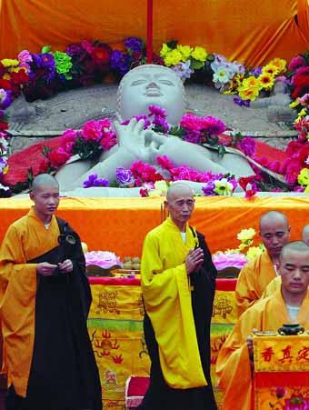 """寺庙中的""""大学堂"""" 2015佛教夏令营汇总"""