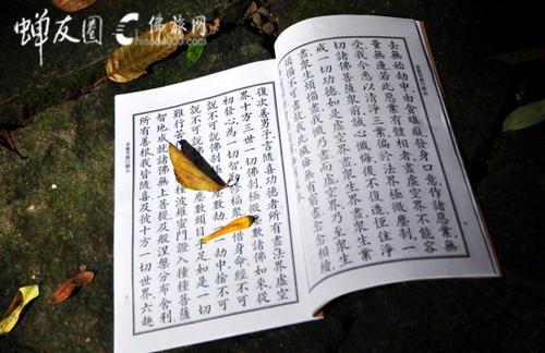 佛经开示人类起源