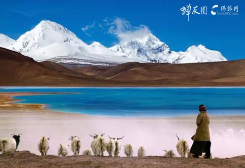 西藏:让旅行的意义不再只是生命的流浪