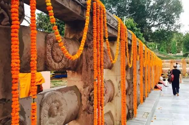 佛旅网印度朝圣之旅