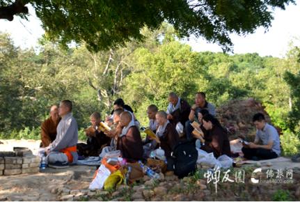 行走印度:鹿野苑掩于废墟 菩提树几度轮回