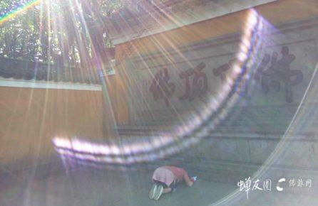 浙江普陀山朝圣观音菩萨 大慈大悲圆满祈福游学之旅 10.17