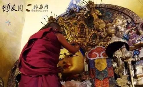 蝉友圈龙8国际娱乐官网网西藏游学之旅