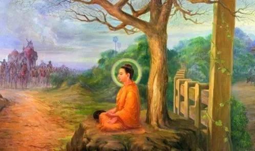 释迦族被灭族 佛陀为何不用神通救度