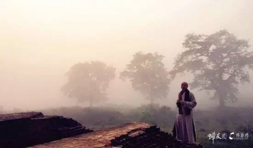 感受佛陀的呼吸与思想 11.22印度朝圣记(二)
