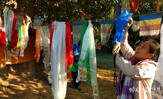 蝉友圈佛旅网印度尼泊尔朝圣之旅