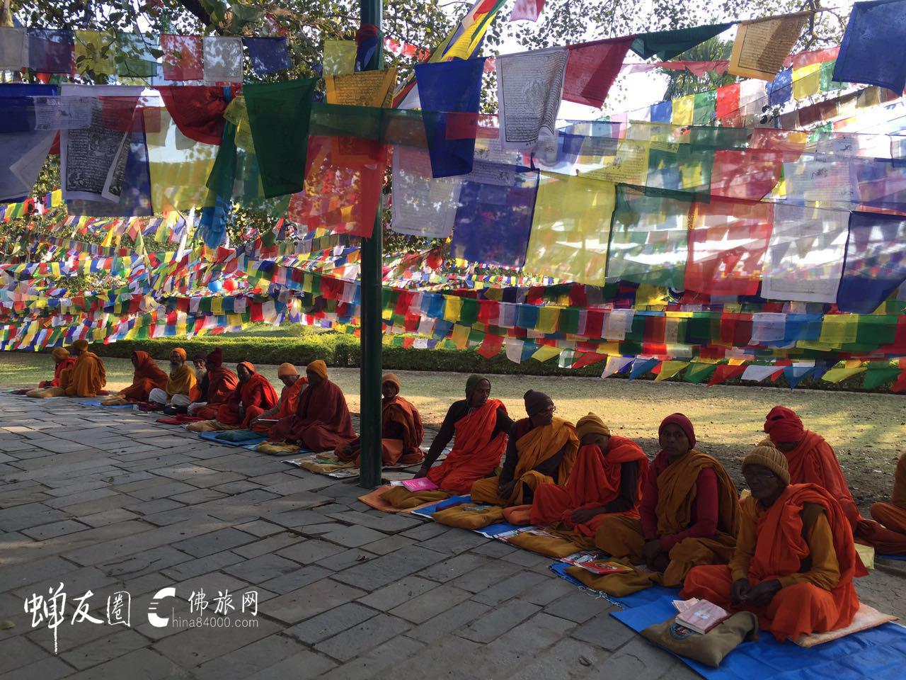 既为朝圣,心与佛同。体佛之心,悟佛之行。— 2017开春·蝉友圈佛旅网印度尼泊尔朝圣之旅