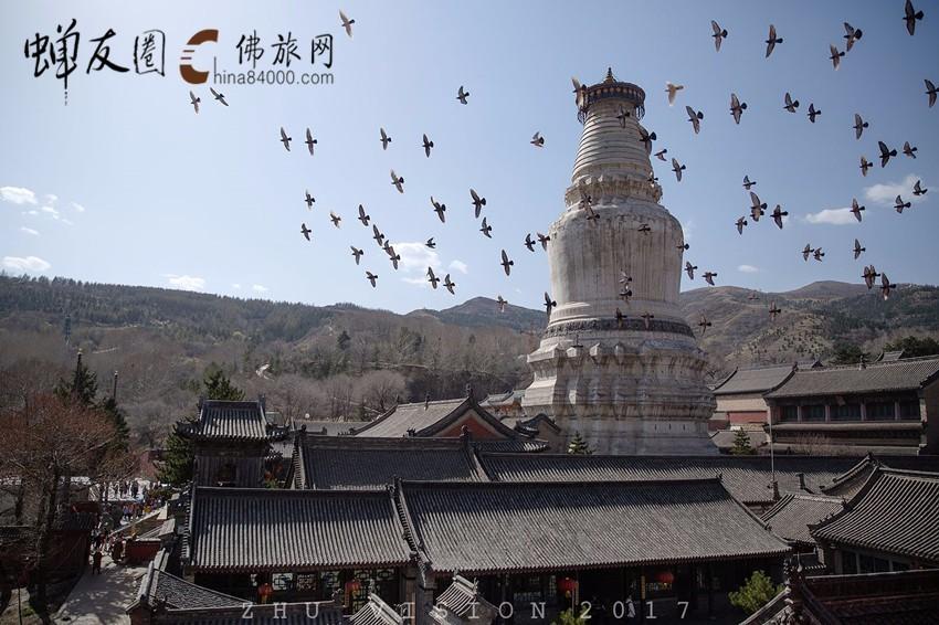 五台山国家十大避暑胜地之首,中国四大佛教名山之首 五台山朝圣