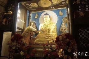 这是世界仅存的三尊佛陀等身像,由佛陀亲自塑建、开光、加持!加持力不可思议!