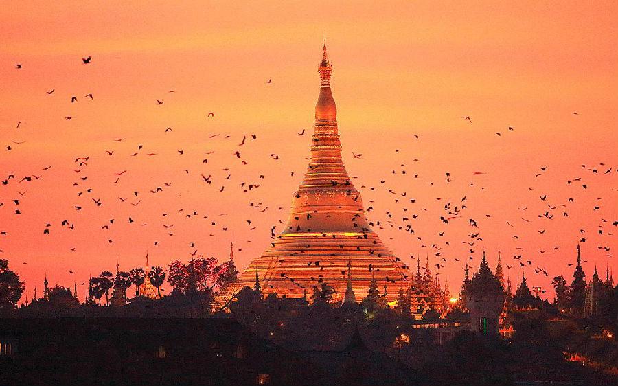 2017蝉友圈佛旅缅甸佛教游学之旅即将开启!礼请当地法师全程指导,参团名额将限量发售!