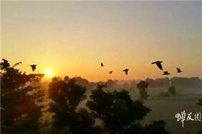 一场用愿心引领的旅程 记我的印度朝圣之旅