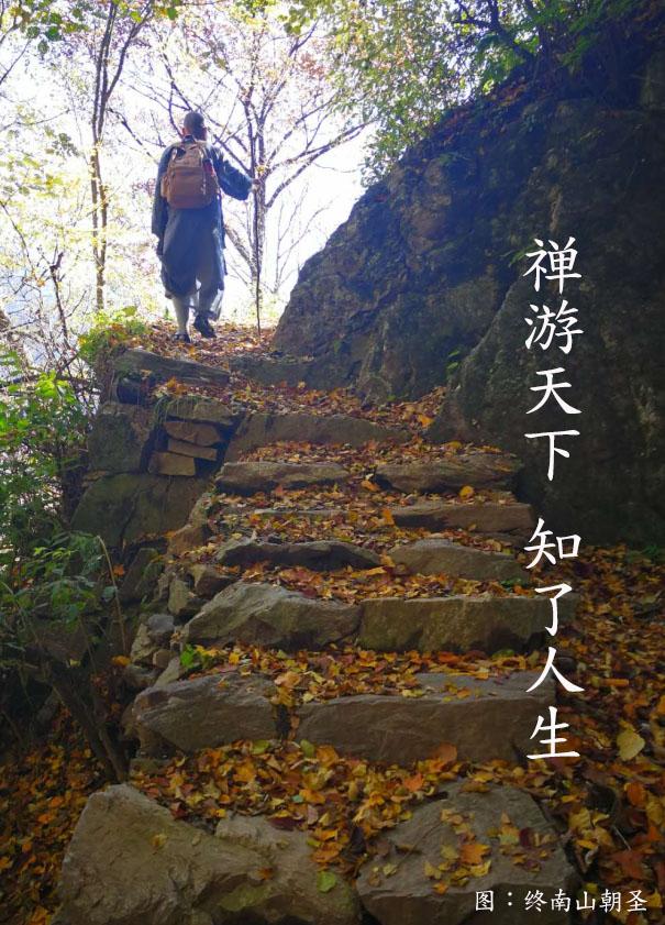 峨眉山龙8国际娱乐官网