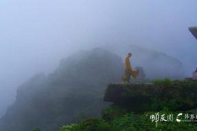 五一小长假 不可不知的三大禅素文化旅游路线!