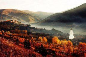 当你的心和文殊菩萨的相应时,你会看到五台山是金色的世界