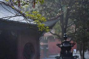 中国佛教协会:关于自觉抵制佛教领域商业化不良影响的通知