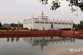 【9月印度】去一个清净的地方,回首一段千年往事!蝉友圈9月印度朝圣回顾(三)