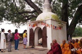 【10月国庆】这里是佛从忉利天降凡处,也是第一尊佛像产生的地方,我们来此礼拜时七彩的佛光从天而降!佛旅9月印度朝圣回顾(一)