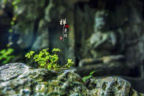 临济宗——蝉友圈国旅