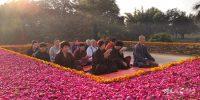 万里朝圣忆佛陀 蝉友圈3月印度朝圣回顾(总)