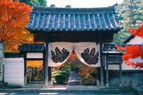 9月新线 | 日本深度参访游学体验9天8夜 京都、奈良、高野山、大阪参访佛教千年祖庭道场、感悟体验中日传统文化之魅力!名额有限!