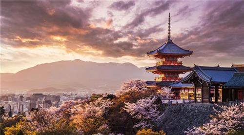 9月新线 | 日本游学参访