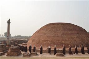 毛家湾考古发掘四周年  出土瓷器万寿寺展出