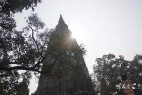 最全印度尼泊尔佛教朝圣行程—蝉友圈佛旅网2019