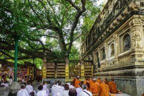 佛陀为什么选择在印度出生?—蝉友圈佛旅网印度朝圣