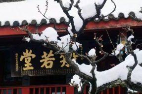 浙江省佛教协会致全省佛教徒的一封信