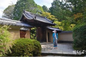 1200年历史的佛教圣地:日本高野山——蝉友圈日本游学之旅