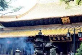 能容万物,普陀山普济寺的松紧神运殿——蝉友圈佛旅网