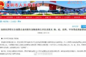深圳禁止食用野生动物条例征求意见:狗蛇田鸡等或将被禁食