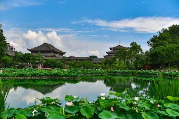 美丽寺院 | 峨眉山大佛禅院