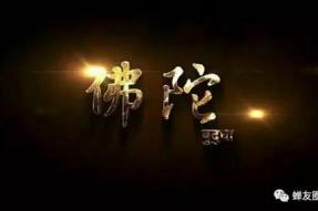 佛陀电视剧全集54中文字幕(补齐更新)   佛旅网