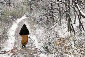 为什么神会禅师要争南宗的正统?