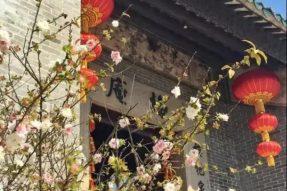 元旦·12月28日广东禅宗十三大圣迹全景6天5夜积福游学之旅(3天+3天)